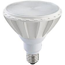 PAR38 15W Dimmable Energy Star LED Bulb 2700K Firefly