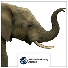 $25 Charitable Donation For: The Wildlife Trafficking Alliance