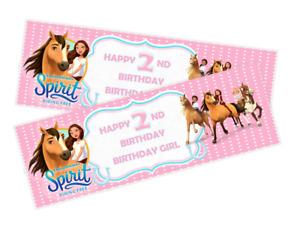 Personalised Birthday Banners SPIRIT RIDING FREE X2