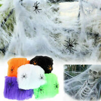 Spider Web Halloween Props Home Party Decoration Stretchy Cobweb W/ 2 Spider Vv