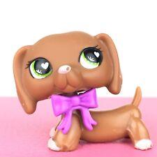 Authentic Littlest Petshop 556 Dog Dachshund / Chien Teckel LPS Pet Shop