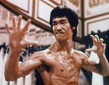 "ENTER THE DRAGON bruce lee martial arts movie warrior Mini Poster 24""x36"""