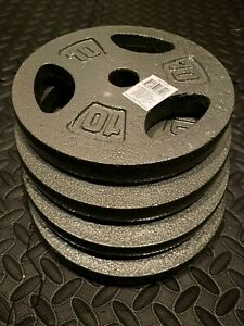 "10 LB Weight Plates CAP 1"" Hole Iron GRIP Set of Four - 40 Lbs. FREE SHIP"