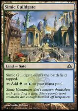 4x Simic Guildate Dragon's Maze MtG Magic Land Common 4 x4 Card Cards