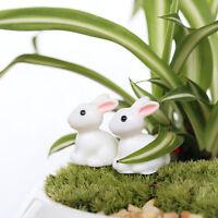 2pcs Rabbit Miniature Ornament Home Decor Fairy Garden Figurine Bonsai StatuDSUK