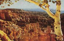 Postcard Fairyland At Bryce Canyon National Park