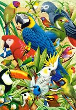 3D Lenticular Picture Jungle Scene Tropical Birds Toucan Macaws Parrots 29x39cm