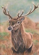 Stag deer woodland animal handmade print stag picture artwork stag gift painting