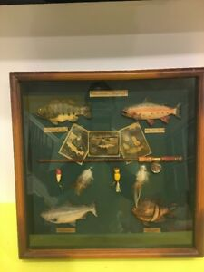 Vintage American Angling Fishing Shadow Box,home Cabin Or Den Decor