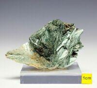 Actinolite / Tremolite Fibrous Crystal Cluster Mineral Specimen -  84mm  144g
