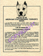 Rules In An American Staffordshire Terrier's House