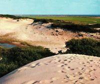 Sand Dunes Climbing Cape Cod Mass Ocean View Vintage Postcard