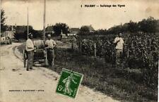 PULIGNY - Sulfatage des vignes