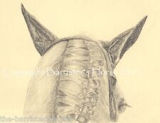 'WAITING FOR THE BELL', EQUESTRIAN/HORSE GRAPHITE DRAWING/ART, GICLEE PRINT A4