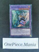 Yu-Gi-Oh! Magicienne des Ténèbres le Dragon Chevalier : DLCS-FR006  UR/ANY COLOR