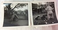 Vintage Photo Toddler Boy with Puppies Labs? Snapshot Raised with Dogs
