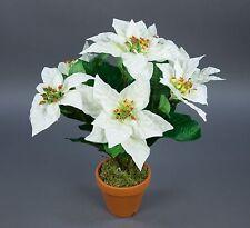 12 Stück Weihnachtsstern Natura 72cm samt-rot PM Kunstblumen künstliche Blumen