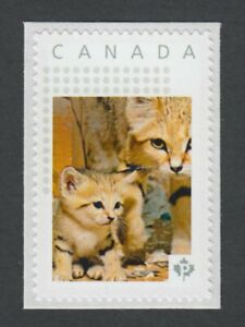 lq. SAND CAT with KITTEN = Picture Postage stamp MNH-VF Canada 2014 [p11sn15]