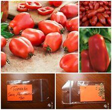 30//200 Graines TOMATE Rouge San Marzano 2 MI SAISON Coulis Sauce Salade Séchage