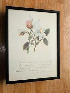 Framed flower print, Botanical framed wall art -12''x16''. old flower print