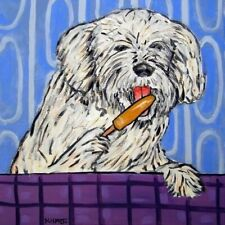 havanese dog art print on ceramic art tile coaster gift modern Jschmetz popsicle