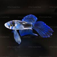 RARE Retired Swarovski Crystal Siamese Fighting Fish Blue 236718 Mint Boxed