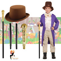 Kids Boys Chocolate Factory Owner World Book Day Week Fancy Dress Costume Outfit