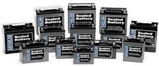 WPS - CT12B-4 - Maintenance Free Sealed Battery`