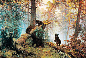 Morning in a Pine Forest A1 by Ivan Shishkin High Quality Canvas Print