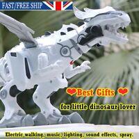 Walking Dragon Toy Fire Breathing Water Spray Dinosaur Educational Toy Gift