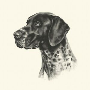 Dog Show Ring Number Clip Pin Breed - Pointer (German Short-Haired) GSP