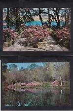 Vintage Postcard Lot AL- BELLINGRATH GARDENS Azaleas Mirror Lake & River Patio