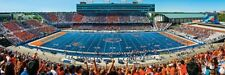 Jigsaw puzzle NCAA Boise State University Albertson Stadium NEW 1000 piece