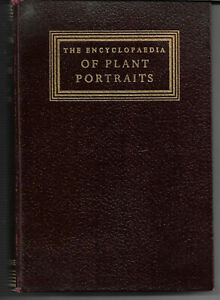 Vintage book The Encyclopaedia of Plant Portraits by A G L Hellyer 1958 vgc