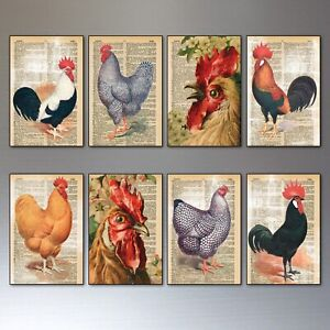 Chicken farm art fridge magnets set of 8 retro thin decorative magnets