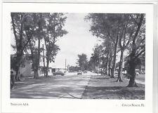 "*Postcard-""Trees on Hwy. A1A""- (Atlantic Avenue) CLASSIC- Cocoa Beach FL (#161)"