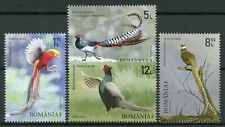 Romania Birds on Stamps 2020 MNH Pheasants Golden Pheasant Fauna 4v Set
