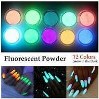 12 Colours Acrylic Fluorescent Powder Glow In the Dark Manicure Nail Art Pigment