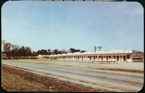 ROCKY MOUNT NC Washburn's Motel Court Vtg Route 301 Postcard Old North Carolina