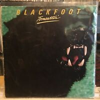 [ROCK/POP]~EXC/VG+ LP~BLACKFOOT~Tomcatin'~{OG 1980~ATCO~Issue]