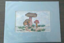 Vintage Anna Marie Solomon Mushroom Watercolor Painting Signed