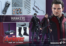 Hot Toys Sideshow MMS HAWKEYE Avengers Age of Ultron Sixth Scale Figure BNIB