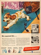 1940s vintage AD WESTERN ELECTRIC TELEPHONES Art Cute puppy phone falls 041017
