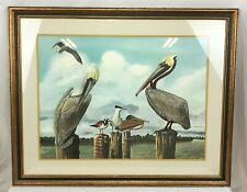 "Ray Harm ""Pelicans"" Framed Print ~ Limited Edition, Signed, Numbered, 1967"