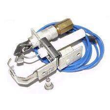 Raypak Swimming Pool Heater Propane & Natural Gas Pilot 002003F
