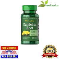 DANDELION ROOT 520mg FLUID BALANCE IMMUNITY DIGESTION HERBAL SUPPLEMENT 100 CAPS