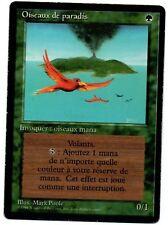 *MRM* FR Oiseaux de paradis - Birds of paradise Ex or Ex- MTG FBB