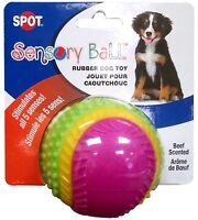 Pet Sensory Ball Rubber Dog Toy Sound Bell Squeaker Smell Taste Beef 2.5 inches