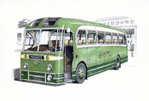 SOUTHDOWN BUSES - Postcard Set - 1950's & 60's Guy Arab Leyland Titan Tiger Cub