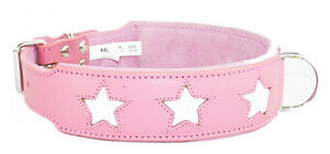 Pink Staffie Dog Collar With 6 White Stars To Fit 20 - 24 Inch Neck 2 Inch Wide
